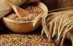 Правильно поставить самогон на пшенице